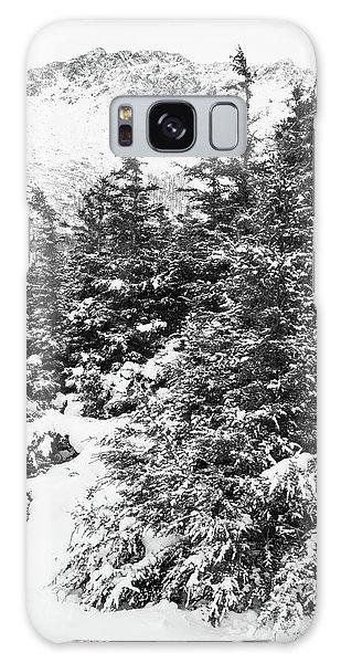 Winter Night Forest M Galaxy Case