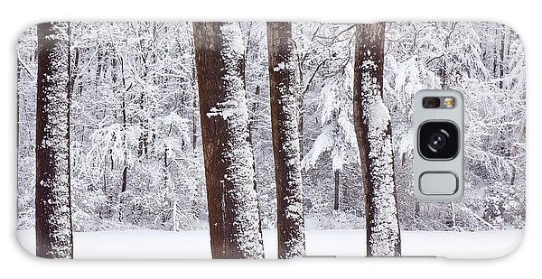 Winter On Paradise Pond Galaxy Case