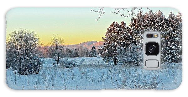 Winter On The Tree Farm Galaxy Case