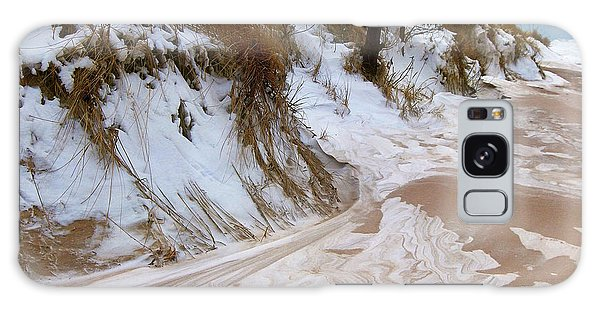 Winter Paints Galaxy Case