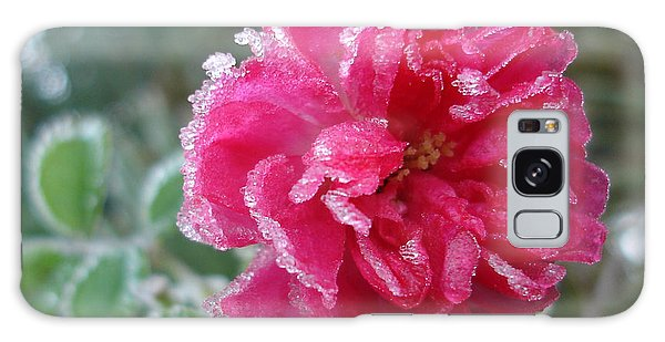 Winter Rose Galaxy Case