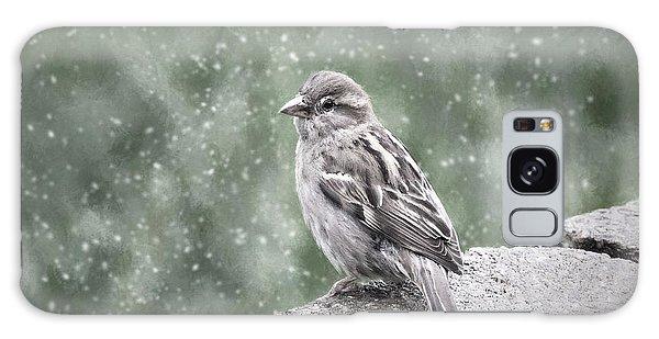 Winter Sparrow Galaxy Case