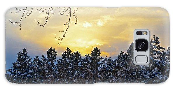 Winter Sunset On The Tree Farm #1 Galaxy Case