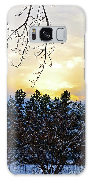 Winter Sunset On The Tree Farm #2 Galaxy Case