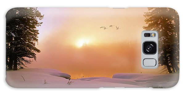 Winter Swans Galaxy Case by Leland D Howard