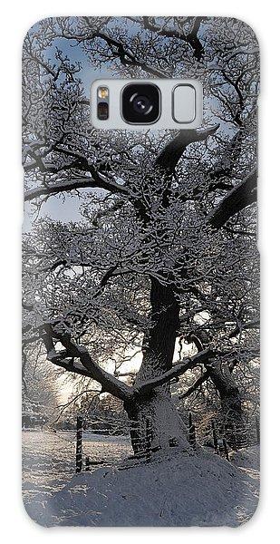 Winter Tree In North Wales Galaxy Case