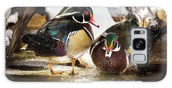 Winter Visitors - Wood Ducks Galaxy Case