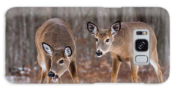 Winter White Tail Deer Galaxy Case