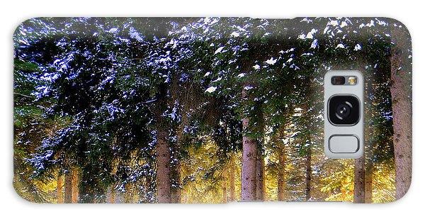 Winter Wonder Galaxy Case