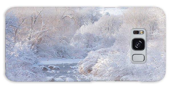 Winter Wonderland - Colorado Galaxy Case