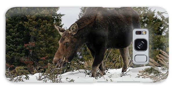 Wintering Moose Galaxy Case