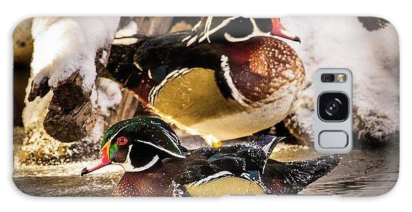 Wintering Wood Ducks Galaxy Case