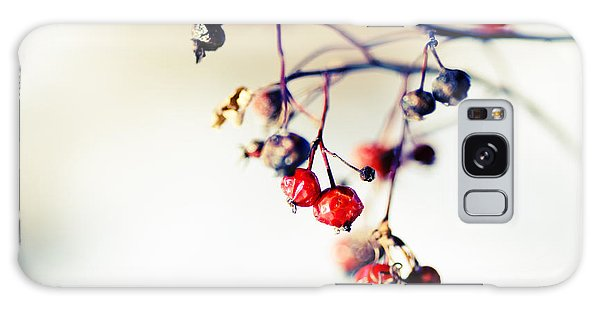 Cold Day Galaxy Case - Winter's Berries by Todd Klassy