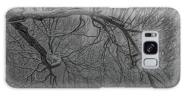 Wintery Tree Galaxy Case