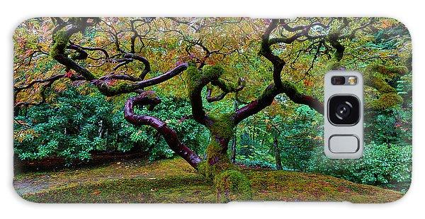 Wisdom Tree Galaxy Case by Jonathan Davison