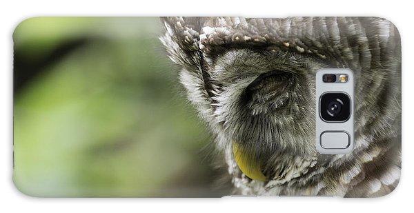 Wise 'ol Owl Galaxy Case