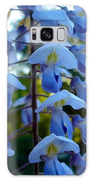 Wisteria - Blue Hooded Ladies Galaxy Case