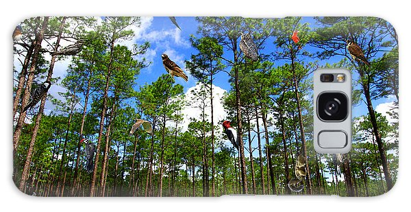 Withlacoochee State Forest Nature Collage Galaxy Case