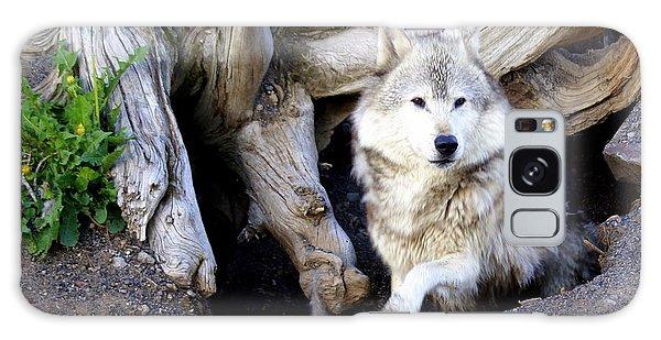 Wolf Den 1 Galaxy Case