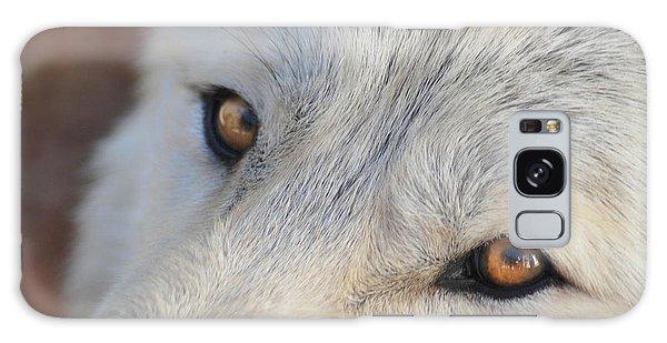 Wolf Eyes Galaxy Case by Carolyn Dalessandro