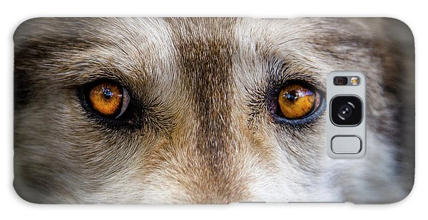 Wolf Eyes Galaxy Case