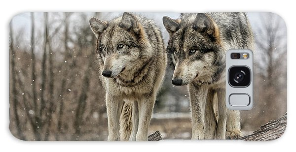 Wolf Pair Galaxy Case by Shari Jardina