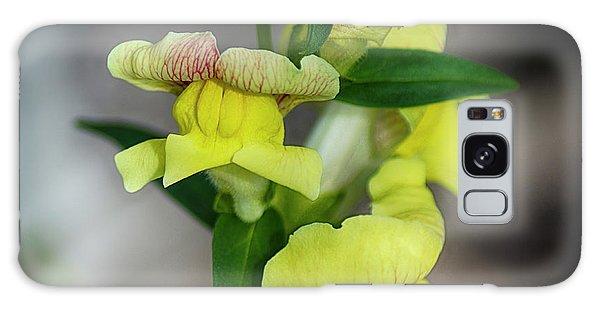 Wonderful Nature - Yellow Antirrhinum Galaxy Case