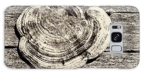 Galaxy Case featuring the photograph Wood Decay Fungi, Nagzira, 2011 by Hitendra SINKAR