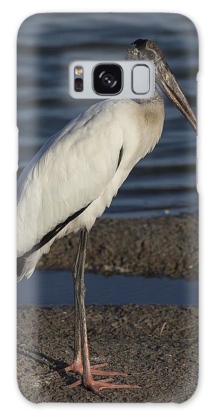 Wood Stork In The Final Light Of Day Galaxy Case