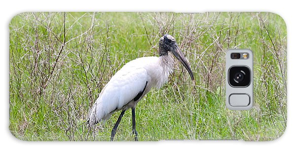 Wood Stork In The Marsh Galaxy S8 Case
