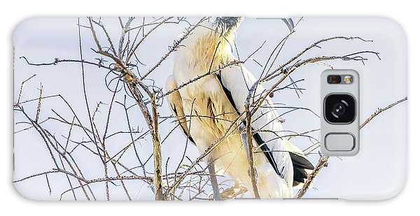 Wood Stork Sitting In A Tree Galaxy Case