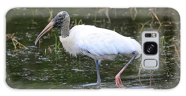 Wood Stork Through The Marsh Galaxy S8 Case