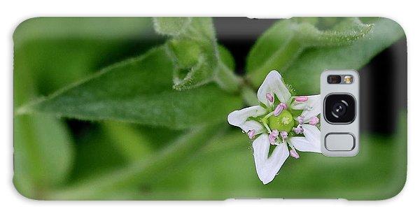 Woodland Wildflower Galaxy Case