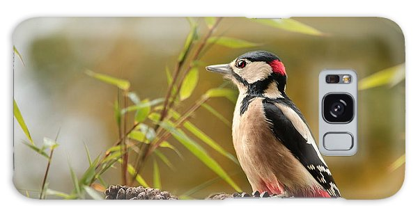 Woodpecker 3 Galaxy Case