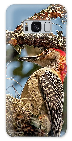 Woodpecker Closeup Galaxy Case