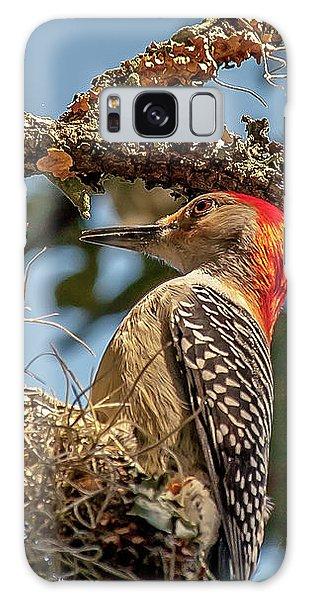 Woodpecker Closeup Galaxy Case