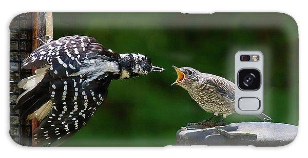 Woodpecker Feeding Bluebird Galaxy Case