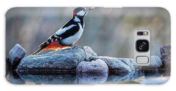 Woodpecker In Backlight Galaxy Case by Torbjorn Swenelius
