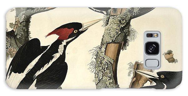 Woodpecker Galaxy S8 Case - Woodpecker by John James Audubon
