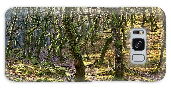 Woods Near Badgeworthy Water Exmoor Galaxy Case