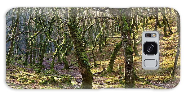 Woods Near Badgeworthy Water Exmoor Galaxy Case