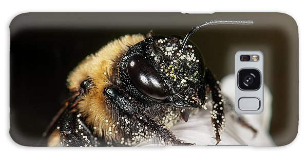 Worker Bee And Pollen Detail Galaxy Case