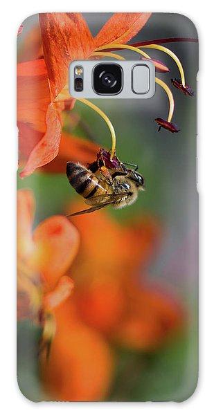 Pollen Galaxy Case - Working Bee by Stelios Kleanthous