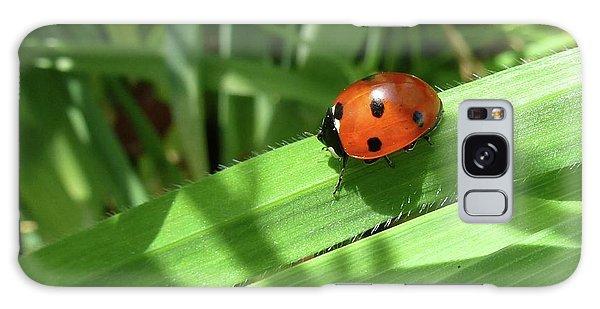 World Of Ladybug 1 Galaxy Case