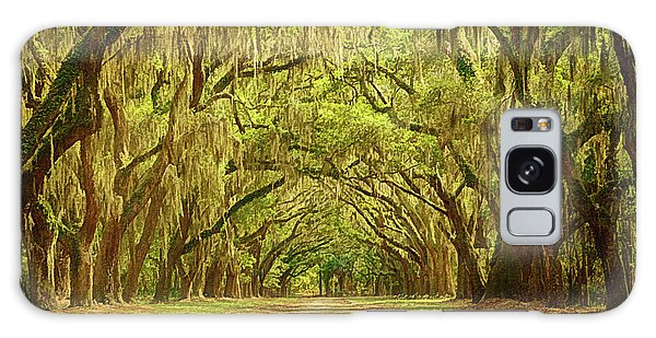 Wormsloe Plantation Oaks Galaxy Case by Priscilla Burgers