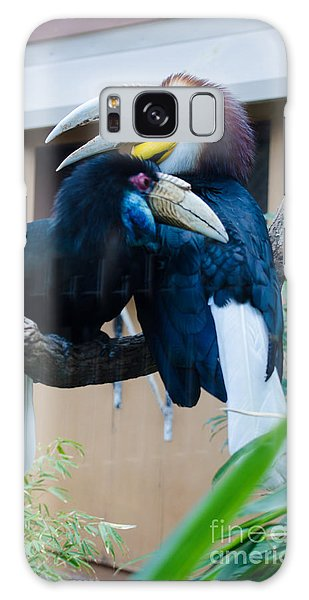 Wreathed Hornbills Galaxy Case