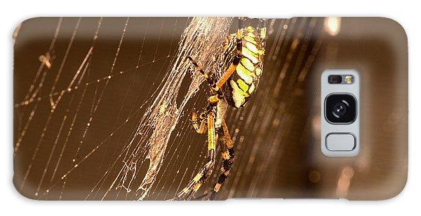 Writing Spider Galaxy Case