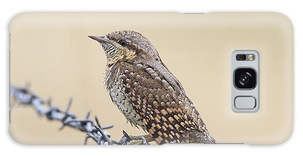 Wryneck On Wire Galaxy Case