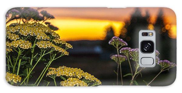 Yarrow At Sunset Galaxy Case