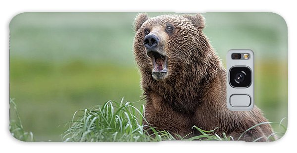 Whining Galaxy Case - Yawning Alaska Brown Bear by Rob Daugherty